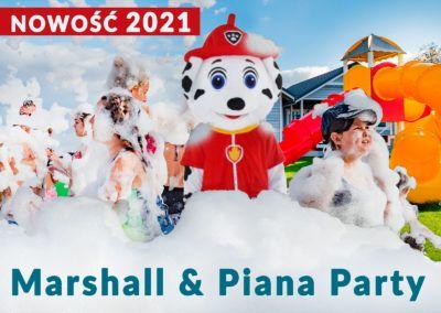 Nowość 2021
